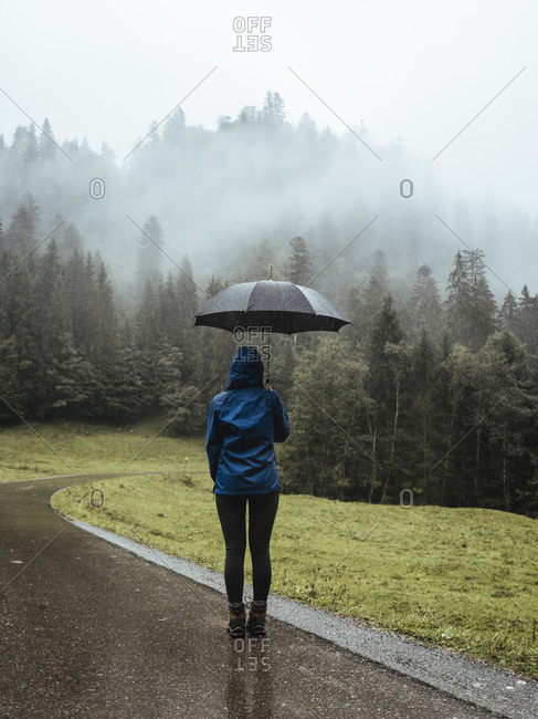 Rear view of woman with umbrella standing on wet road in forest during foggy weather
