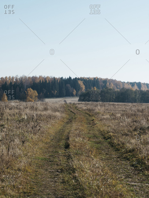 Scenic view of grassy landscape against clear sky during sunny day