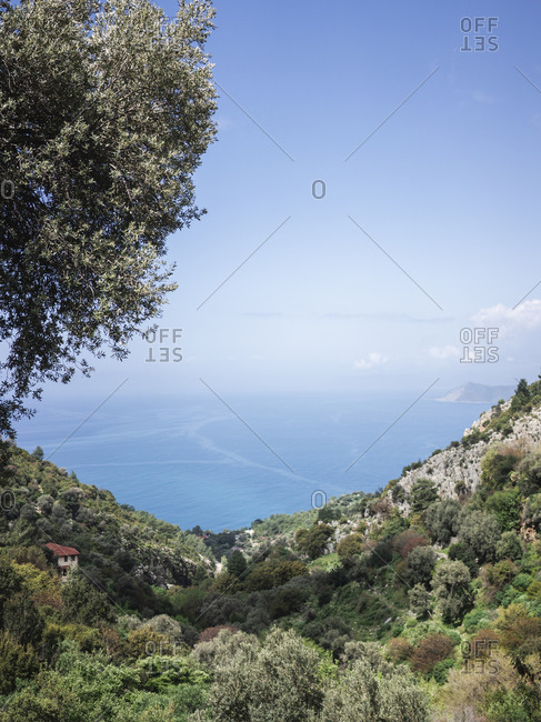 Mediterranean seascape amidst forested mountains during sunny day
