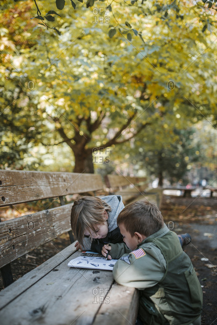 Brothers reading book on bench at Yosemite National Park
