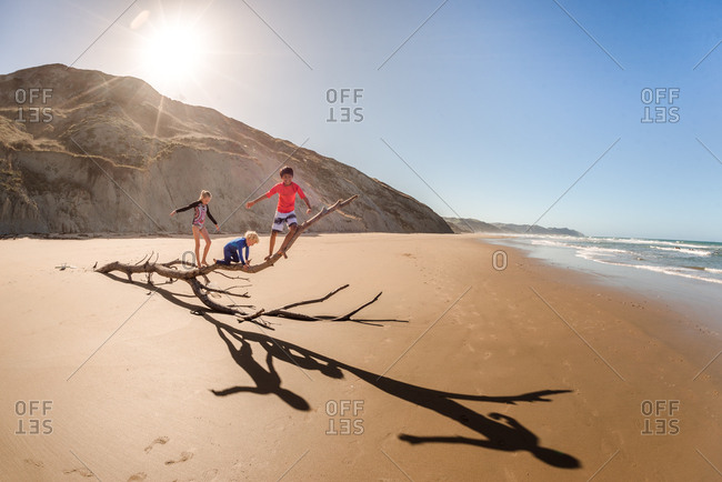 Tween siblings climbing on a tree with little brother at beach