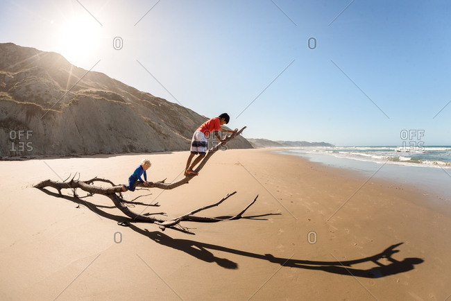 Two brothers climbing on driftwood at a beach in New Zealand