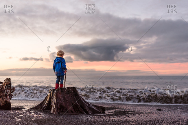 Curly haired boy standing on stump at beach