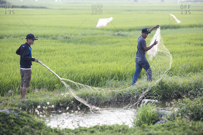 Vietnam, Quang Nam Province, Hoi An - March 5, 2018: Two young men fish with a net in a rice paddy canal in Vietnam.
