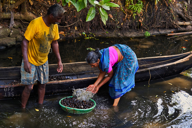 Alleppey, Kerala, India - February 18, 2019: Couple in river with basket by boat collecting water chestnuts
