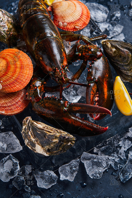 Lobster with lemons, oysters and clams on ice