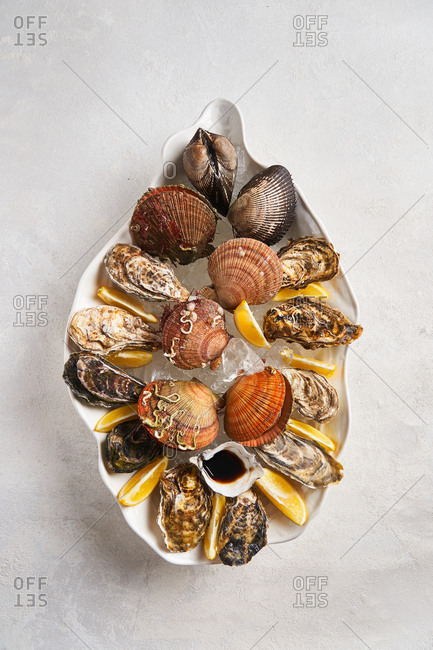 Variety of shellfish in dish on light background