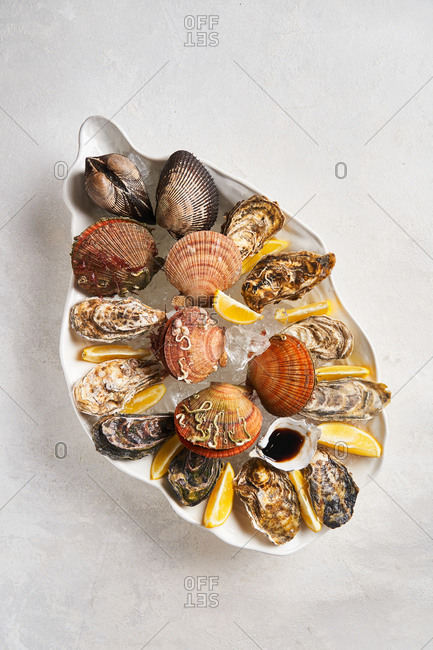 Variety of shellfish in dish with ice on light background