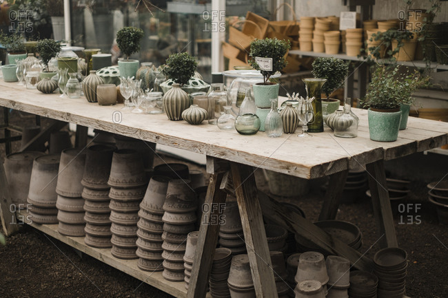 Pots with vases and plants on tables at greenhouse