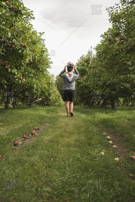 Teen boy balancing bag of apples on head walking in an apple orchard.