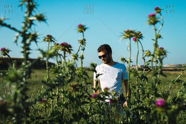 Young man contemplates in a field of flowers