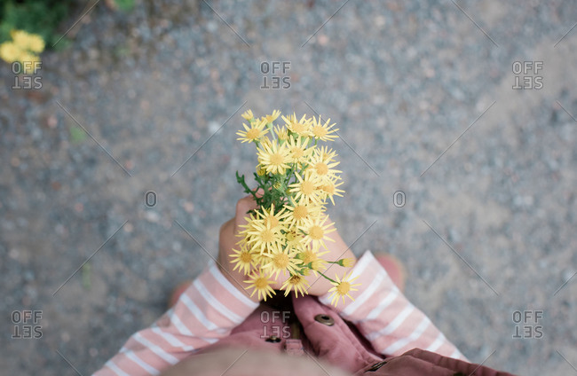 Sky view of a young girls hands holding yellow flowers outside walking