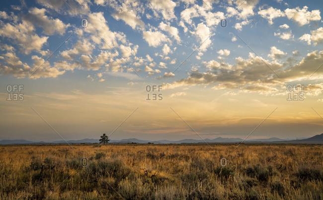 Grand Teton mountain at sunrise golden hour