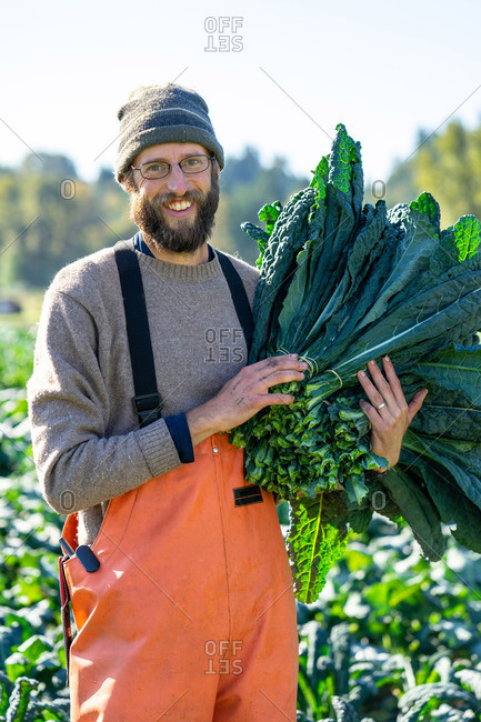 Proud farmer with a huge bunch of organic kale fall day harvest