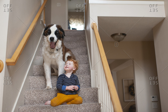 Boy 2- 3 years old sitting on steps with large dog yawning at home