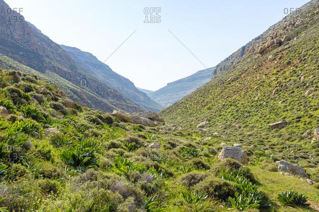 Wadi Jihar gorge, El Kanub Nature Reserve near Arab ar Rashaydah, West Bank, Palestine