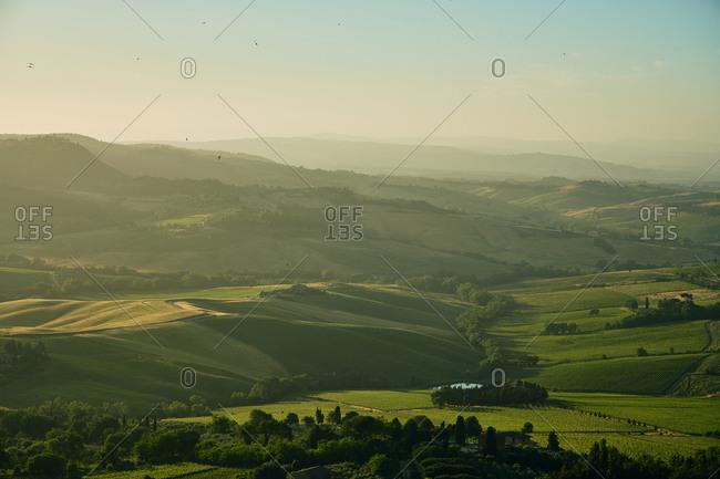 Hilly green plains in sunlight haze