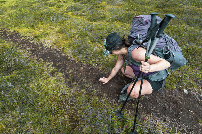 A women sizes up a grizzly bear track in the mud.