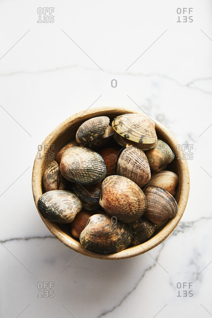 Clams in a bowl on white marble surface