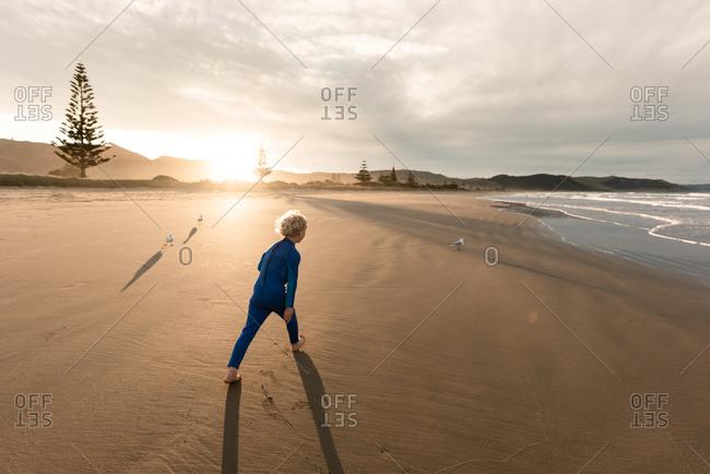 Boy chasing seagulls on a sandy beach at sunset
