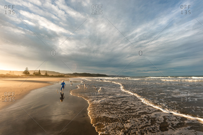 Rear view of boy chasing seagulls on a sandy beach at sunset