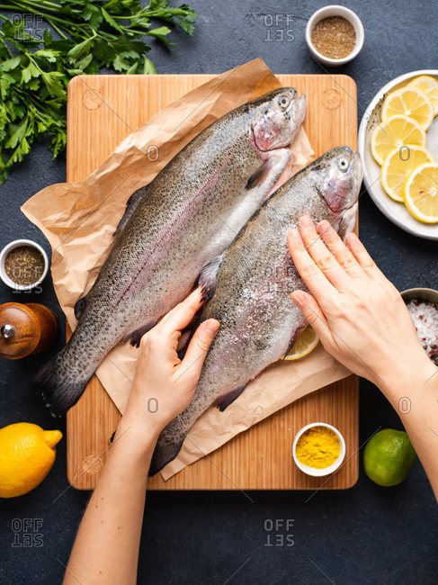Woman salting freshwater trout. Hands holding fish and rubbing salt