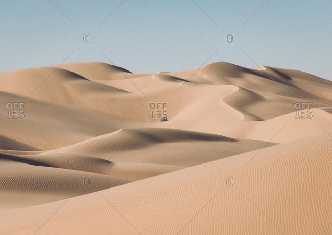 Sand dunes with a lone bush in the desert near Yuma, AZ