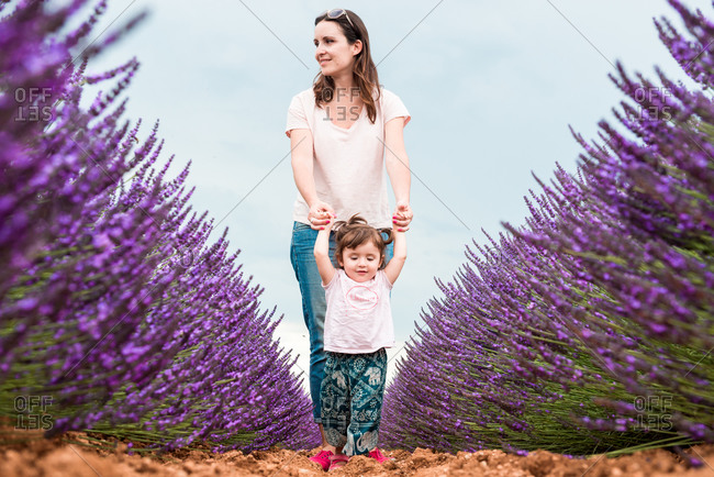 Happy mother and daughter walking among lavender fields in the summer