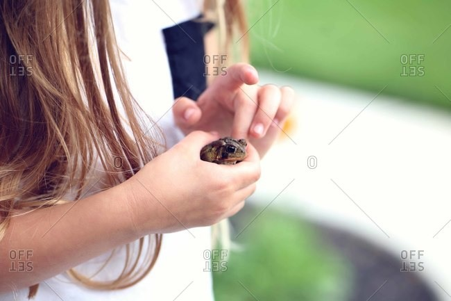 Midsection of curious girl with long hair touching frog in backyard