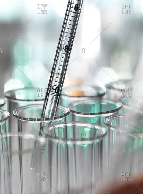 Medical samples pipetting in test tube for experiment at laboratory