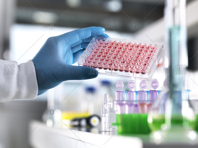 Cropped hand of male scientist holding blood samples in laboratory