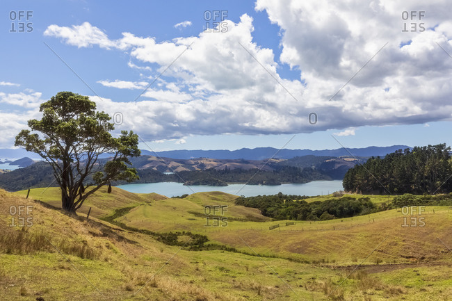 New Zealand- North Island- Waikato- scenic landscape against cloudy sky
