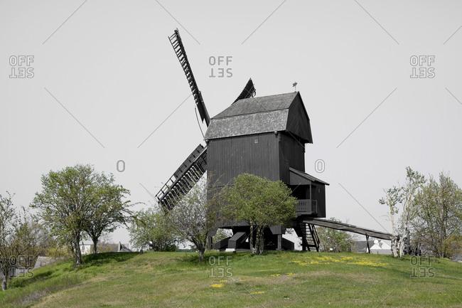 Germany- Brandenburg- Werder- scenic landscape with windmill