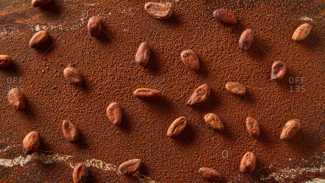 Natural organic cocoa beans pattern on a brown powder background with copy space and soft shadows