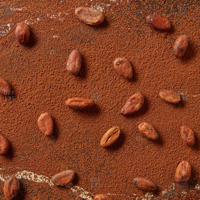 Cocoa powder background from freshly roasted natural organic cacao beans pattern with soft shadows and copy space