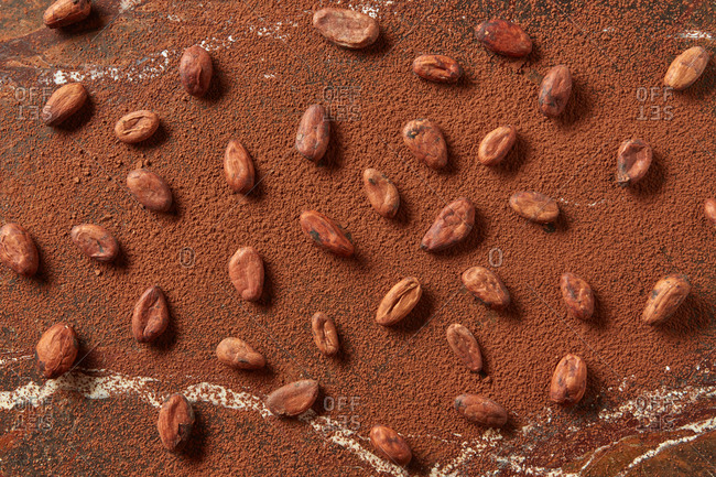 Freshly roasted natural cocoa beans on a powder cacao background with soft shadows