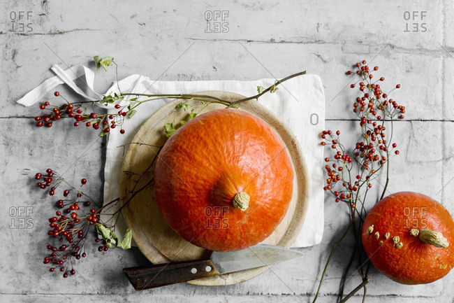 Red kuri squashes (Cucurbita maxima)- rose hips- kitchen knife- napkin and wooden plate
