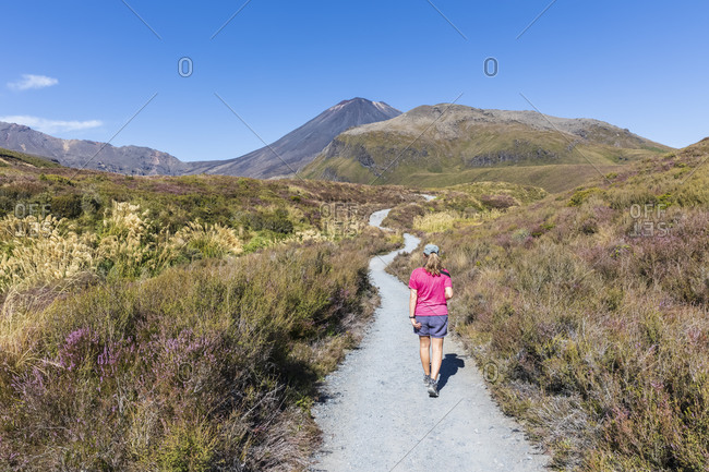 New Zealand- Ruapehu District- Female hiker walking along footpath toward Mount Ngauruhoe volcano