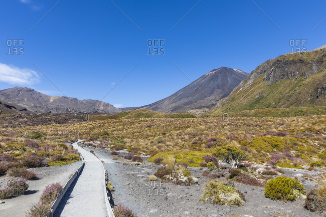 New Zealand- Ruapehu District- Empty footpath toward Mount Ngauruhoe volcano