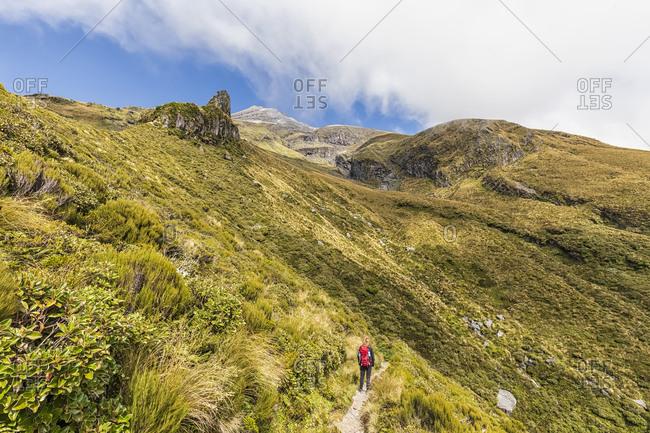 New Zealand- Female hiker admiring surrounding landscape during hike toward Mount Taranaki volcano