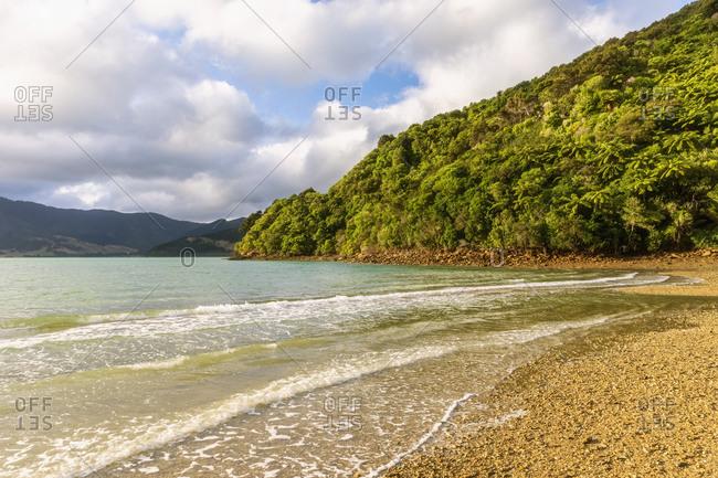 New Zealand- Marlborough Region- Nikau Cove and Kenepuru Sound