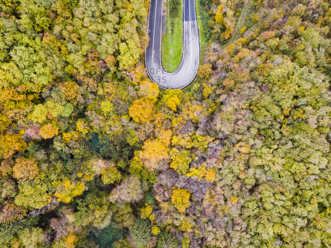 Italy- Trentino- Trento- Aerial view of curve of empty highway stretching across autumn forest in European Alps