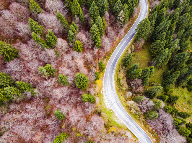 Italy- Trentino- Trento- Aerial view of empty highway in European alps during autumn