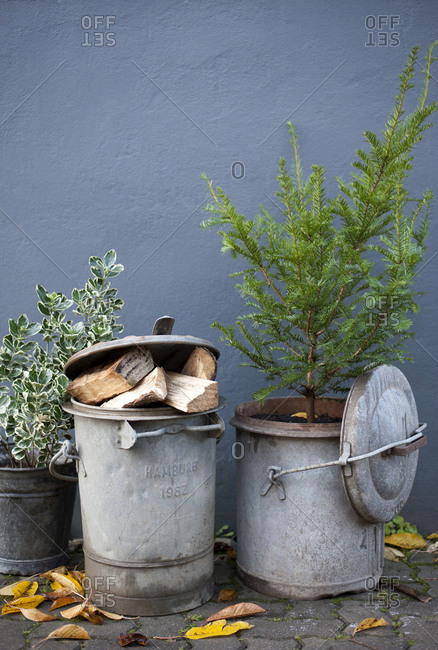 January 1, 2007: Germany- Hamburg- Retro garbage cans with undecorated Christmas tree and firewood