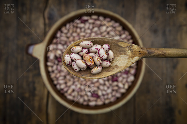 Spoon of dried pinto beans