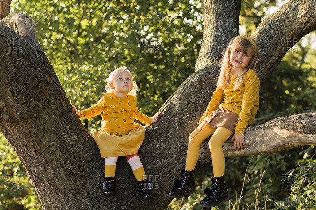 Two little girls dressed in yellow sitting on tree trunk
