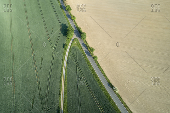 Germany- Thuringia- Aerial view of country road dividing green and yellow countryside fields