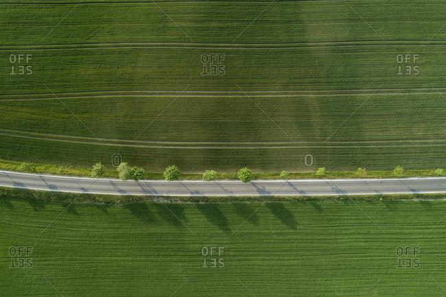 Germany- Bavaria- Aerial view of treelined road stretching between vast countryside fields