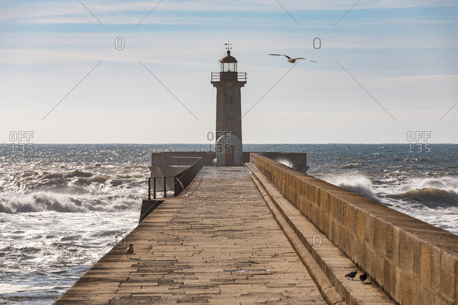 Portugal- Porto District- Porto- Felgueiras Lighthouse with clear line of horizon over Atlantic Ocean in background