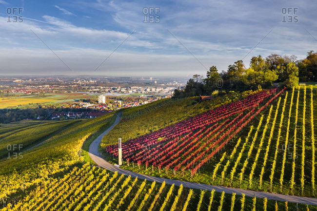 Germany- Baden-Wurttemberg- Stuttgart- Aerial view of countryside vineyards with city in background
